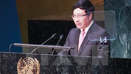 Deputy Prime Minister and Foreign Minister Pham Binh Minh . Photo: VNA