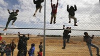 Children climb a fence to watch a football training workshop in Azraq refugee camp in Jordan last November. Photo: Reuters/Muhammad Hamed