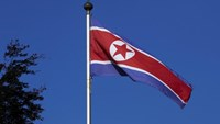 A North Korean flag flies on a mast at the Permanent Mission of North Korea in Geneva October 2, 2014. Photo: Reuters/Denis Balibouse/File Photo