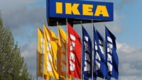 Flags and the company's logo are seen outside of an IKEA Group store in Spreitenbach, Switzerland April 27, 2016. Photo: Reuters/Arnd Wiegmann