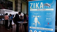Material to prevent Zika infection by mosquitoes are displayed at the 69th World Health Assembly at the United Nations European headquarters in Geneva, Switzerland, May 23, 2016. Photo: Reuters/Denis Balibouse