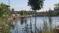 The pond in Phong Phan Pagoda where three 16-year-old boys drowned on Thursday. Photo: Son Luong