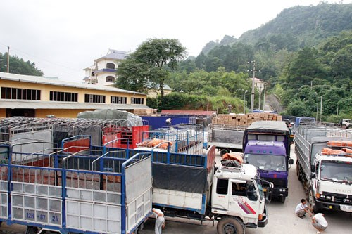 Cargo trucks awaiting to carry Vietnamese farm produce to China at Tan Thanh Border Gate in Lang Son Province