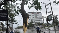 7 dead in landslides as Typhoon Kalmaegi weakens to depression