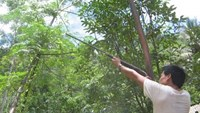 Vietnamese military officer probed for fatal hunting accident