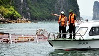48 tourists rescued after boat sinks off Vietnam's Ha Long Bay