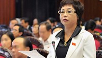 Vietnamese assemblywoman dismissed for alleged housing fraud