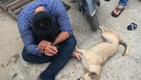 Dog thief arrested in southern Vietnam after zapping militiaman with stun gun