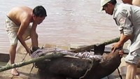 War-era bomb unearthed from river in central Vietnam