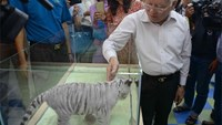 Mayor refutes rumor that Saigon zoo will be relocated