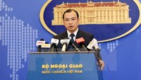 Ministry of Foreign Affairs spokesperson Le Hai Binh. Photo credit: VNA