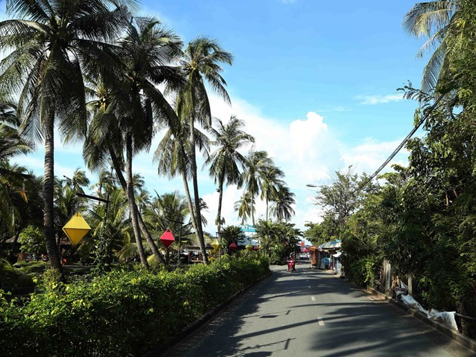 Coconut trees line a street in Binh Quoi, HCMC