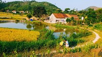 Vietnamese town wins Asian Townscape Award