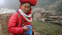 Season's coldest spell to hit northern Vietnam