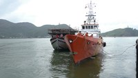 Foreign vessel rammed, sank Vietnamese fishing boat off Hoang Sa: authorities