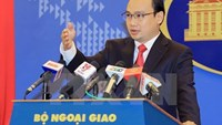 Ministry of Foreign Affairs spokesperson Le Hai Binh. Photo credit: Vietnam News Agency