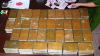 Vietnam, Laos bust transnational drug smuggling rings