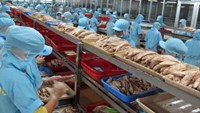 Vietnamese exporters assure seafood safety after mass fish deaths