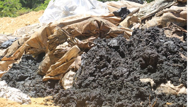Around 100 tons of muddy waste discharged by Formosa Ha Tinh Steel Corp. (FHS) were unearthed from the farm owned by Le Quang Hoa, director of Urban Environment Company in Ky Anh Town, Ha Tinh Province. Photo: Sinh Dung