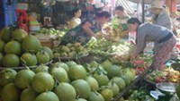 Vietnam February inflation at decade low