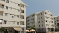 Da Nang apartment offers haven to troubled women