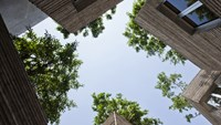 Vietnamese architect wins UK award for tree-house in Tan Binh District
