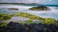 A stunning beach in central Vietnam goes from mossy to multi-colored