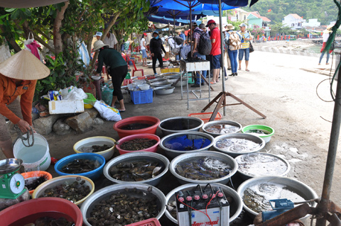 Hoi An island serves the freshest, cheapest seafood in Vietnam