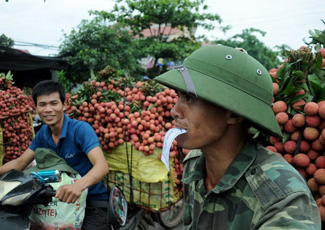 Lychee farmers from Bac Giang Province waiting to sell their produce in June. Photo: La Anh