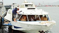 Hydrofoil firm resumes Vung Tau trips at half price