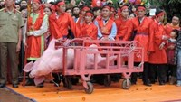Animal group urges Vietnam to end 'cruel' pig slaughter fest