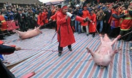 Despite criticism, Vietnamese villagers make blood oath to protect pig slaughter fest