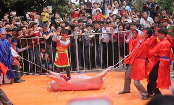 A man chops a pig at a festival commemorating a foreign invaders fighter in Bac Ninh Province in northern Vietnam. Photo: Ngoc Thang