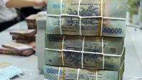 Vietnam's banks squeezing customers to offset bad debt cleanup costs: expert