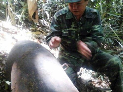 A military officer checks a huge bomb found at a national park in Lam Dong Province. Photo: Lam Vien