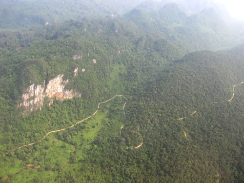 The green cover of Phong Nha - Ke Bang National Park seen from above. Photo: Truong Quang Nam