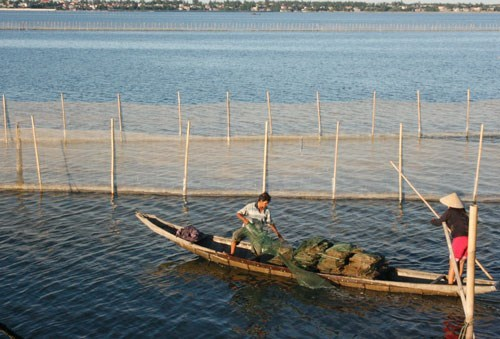 A man pulls a net on the Tam Giang Lagoon in central Vietnam, where three in a family recently drowned. Photo: Dinh Toan