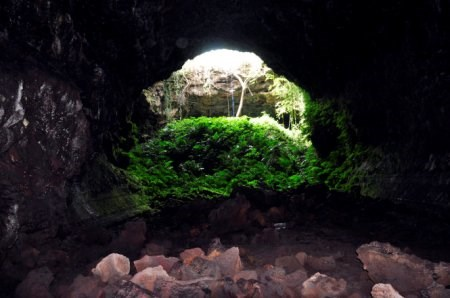 An entrance into the lava cave system in Dak Nong Province. Photo credit: Zing