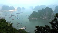 Tourist boats at a section of Ha Long Bay. Photo: Diep Duc Minh