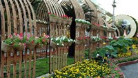 Decorations on Ho Chi Minh City's Lunar New Year flower street in 2014. Photo: Doc Lap