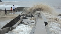 Part of a coastal embankment in the Mekong Delta has been damaged. Photo: Tran Luu/Lao Dong
