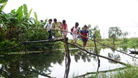 Little children in the Mekong Delta cross a makeshift bridge to go to school. Photo: Cuu Long/VnExpress