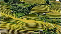 Terraced fields in the northern mountainous province of Yen Bai. Photo: Xuan Dai/baochinhphu.vn