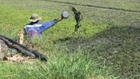 A footage released by news website Zing shows a farmer in Ho Chi Minh City splashing waste vehicle oil onto his water spinach field