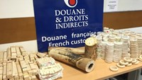 A photo from French customs shows the big haul of ivory smuggled by two Vietnamese from Ethiopia en route to Hanoi