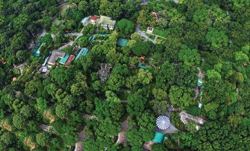 The Saigon Zoo is a green blanket seen from above. Photo: Gian Thanh Son/VnExpress