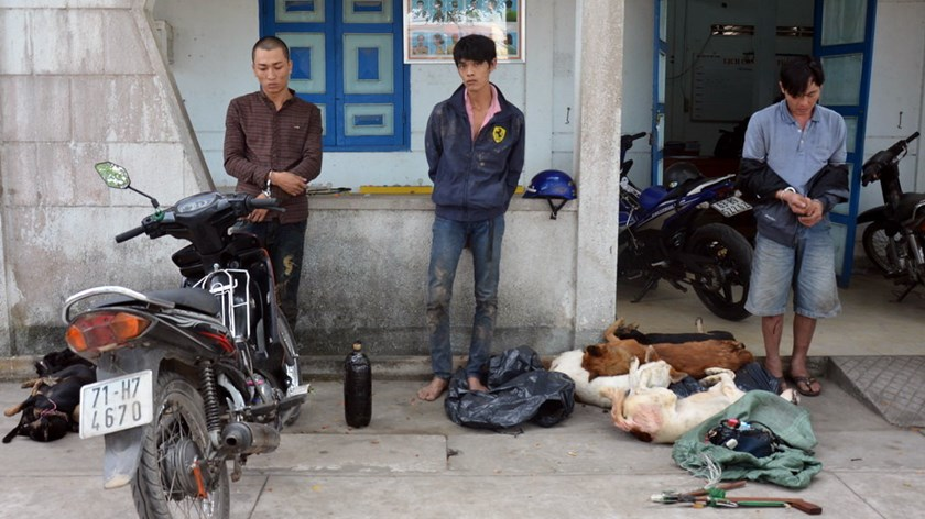 Three men arrested in Ben Tre Province on January 6, 2016 with 12 dead dogs. Photo credit: Quang Duy/Tuoi Tre