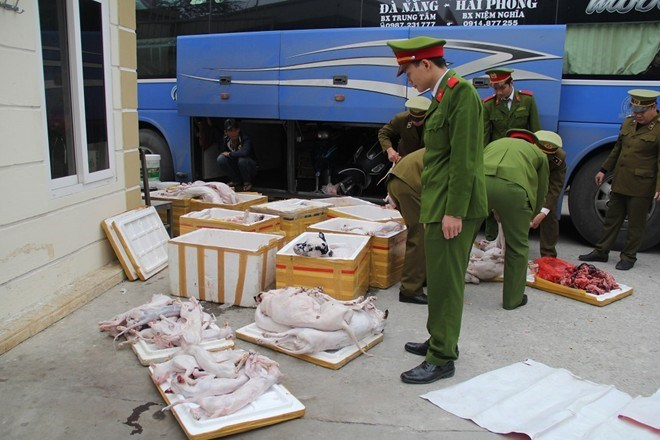 Police check boxes of dead dogs and cats seized in a car January 12, 2016. Photo: Quynh An/Zing