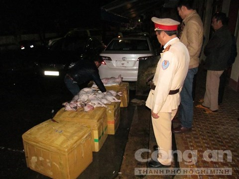 Traffic police in Quang Binh Province and dead dogs seized from a bus January 24, 2016. Photo credit: Cong An Thanh Pho Ho Chi Minh