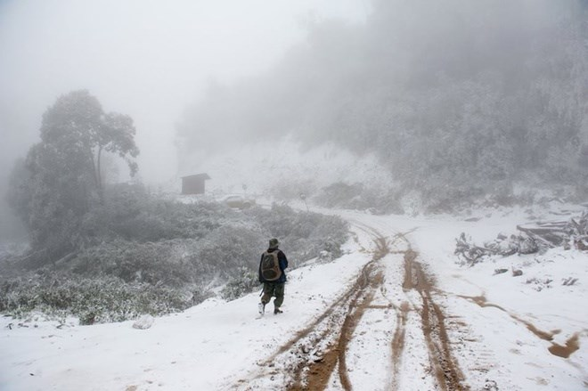 Snow falls in Nghe An Province for the first time on January 24, 2016 as temperatures drop to as low as minus five degrees Celsius. Photo: Bang Tran/VnExpress